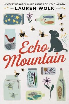 Echo Mountain by Wolk, Lauren